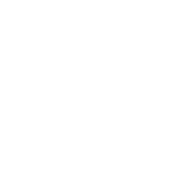 falconeri-ski-team
